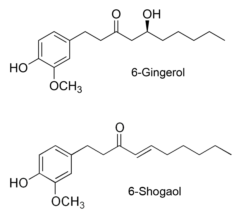 6-gingerol-6-shogoal